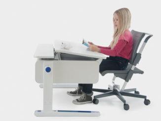 Haltung, richtig sitzen, neigbare Schreibtischplatte